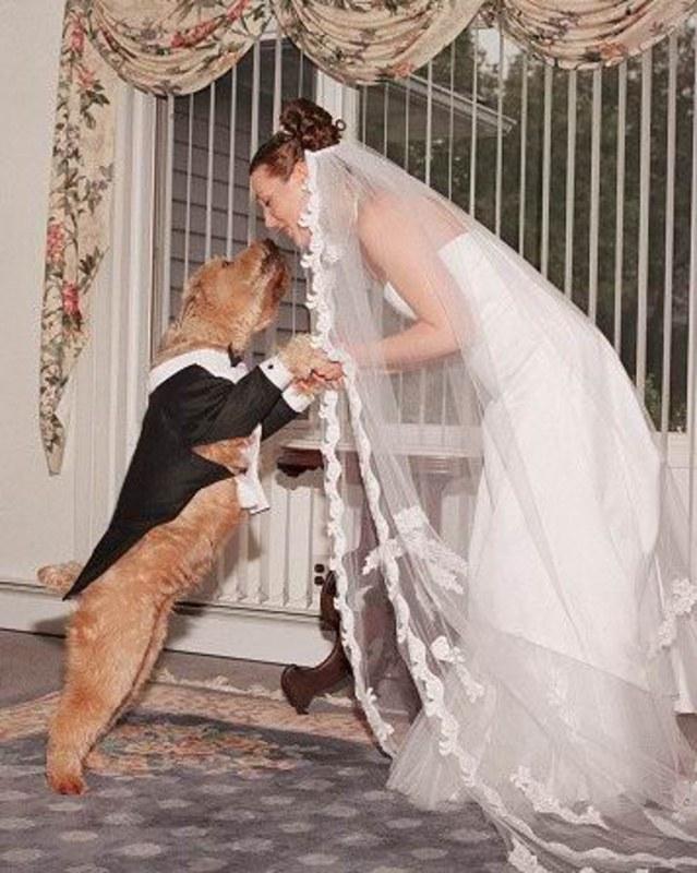 kurezi-na-svadbah-foto-erotika