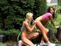 Красивенькие девчонки забавляются вибраторами в саду