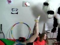 Панда страпонит яркую телку