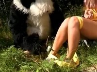 Панда-насильник трахает 18-летнюю девушку на природе