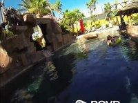 Чел трахает сучку около бассейна